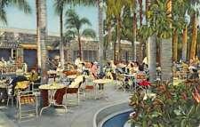 Largo Florida Palm Garden Restaurant Patio Antique Postcard K87167