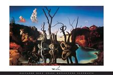 Swans Reflecting Elephants Poster! Salvador Dali Dream-like Beauty Double Image