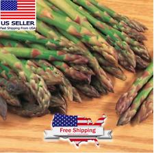 Mary Washington Asparagus Seeds (100 seeds)| Fresh Vegetable Seeds | +FREE SEEDS