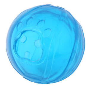 Pets Puppy Plastic Bite Resistant Training Fashionable Food Ball Toys