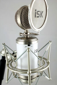 iSK TRM-11 MK2 (2B Beauty) Studio Tube Condenser Microphone with Psvane Tube