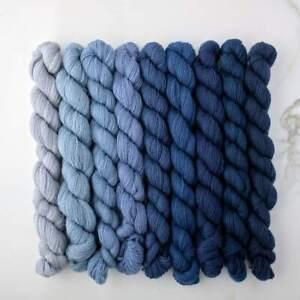 Appletons Crewel Wool Yarn – Dull China Blue 921-929 - 180m Full Hanks