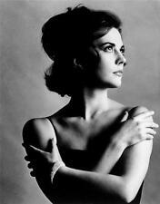 Natalie Wood Hot Glossy Photo No8