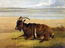 Wildlife Art Archibald Thorburn Ceramic Mural Backsplash Bath Tile #2263