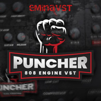 Puncher VST [808 ENGINE] - eDelivery! (PC & MAC)