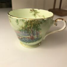 Vintage Aynsley Bone China Tea Cup England Scenic view Lime Green hint of blue