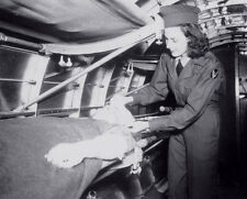 WW2 Photo WWII  US Army Nurse in Aircraft Medical Evac   World War Two / 1552