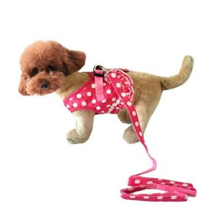 Luxury Dot Design Pet Dogs Chest Harness Small Puppy Supplies drop shipping