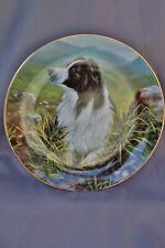 Danbury Mint Border Collies Highland Scout by John Silver Plate # A8098