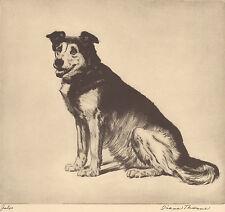 "DIANA THORNE Husky Etching ""JULES"" Vintage 1935 Dog Art Bookplate Print"