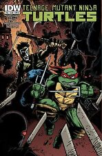 TMNT Teenage Mutant Ninja Turtles #22 (IDW) - Cover B - 1st printing (May, 2013)