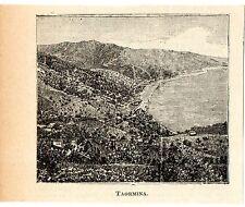 Stampa antica TAORMINA piccola veduta panoramica Messina Sicilia 1905 Old print