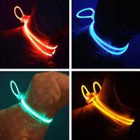 LED Light Up Dog Pet Night Bright Luminous Adjustable Collar Leash Necklace