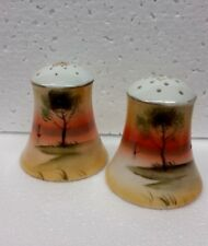 Vintage Hand Painted Noritake Salt and Pepper Shakers Japan