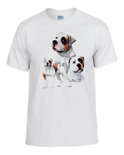 3 American Bulldog's, Veterinarian,Pet, Akc, Kennel, Gromer,Dog Breed