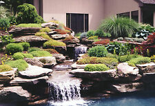 33 OLD POND & WATER GARDEN BOOKS ON DVD - LANDSCAPE GARDENING HOUSE DESIGN PLANS