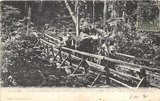 PACK HORSES CROSSING FOOT LOG DEEP CANYON WASHINGTON EXPO CANCEL POSTCARD 1908