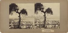Algers panorama Algérie Stéréo Stereoview Vintage citrate