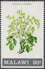 REPUBLIC OF MALAWI -1971- Flowering Shrub - Pterocarpus rotundifolius - Sc. #176
