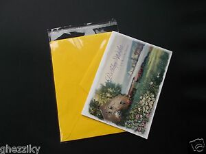 1000 A2+ 4 5/8 x 5 3/4 Clear Resealable Cello Bag Envelope Cellophane Sleeve