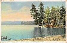 TAMARACK POINT-THE ANTLERS-RAQUETTE LAKE-ADIRONDACK MOUNTAINS-1920s  POSTCARD