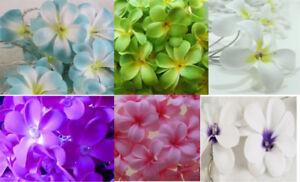 Frangipani Plumeria LED string light 20-100 bulb Mains / Batt White Pink Blue Gr