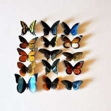 Butterfly Magnets Set of 15 Multi Color Insects Refrigerator Magnets Gifts