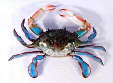 """Hand Painted 17"""" Large Blue Crab Wall Mount Decor Sculpture 32B"""