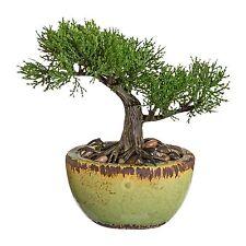 Bonsai Zeder Dekobaum Kunstbaum Kunstpflanze Dekopflanze H 19 cm 1917179-50 F53