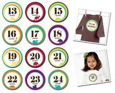 Monthly Milestone Stickers Baby Girl Baby Boy Baby Shower Gift Idea 13-24 months