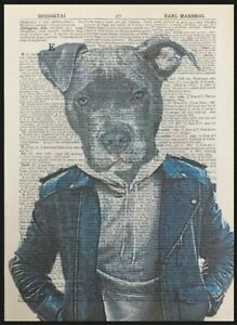 Staffordshire Bull Terrier Dictionary Print Art Picture Print Staffy Cool Dog