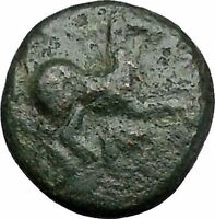 Maroneia in Thrace 400BC Original Ancient Greek Coin Horse Vine Grapes  i48969