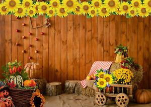 10x8ft Thanksgiving Barn Fall Harvest Pumpkin Photo Background Vinyl Backdrop LB