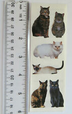 StickyPix CATS - Strip of Stickers by Paper House