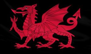 Large Polyester Welsh Dragon Flag 5x3 / 150x90cm Wales St Davids Day Rugby Sport