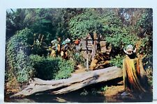 Disneyland Headhunter Country Adventure Rivers Postcard Old Vintage Card View PC