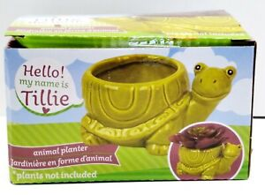 TILLIE TURTLE Ceramic Animal Planter Pot - Home Table Top or Kitchen Decoration