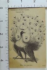 L.B Ware & Co Clothiers Hidden Picture Puzzle Card Mr. Bluebeard Peacock F70