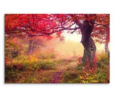 120x80cm Leinwandbild auf Keilrahmen Herbst Wald Baum Ukraine Wandbild Retro