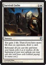 Survival Cache x4 NM Commander 2013  MTG  Magic Cards  White Uncommon