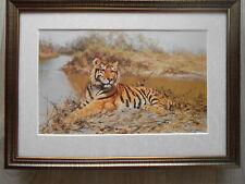 David Shepherd print 'Tiger In The Sun'  FRAMED