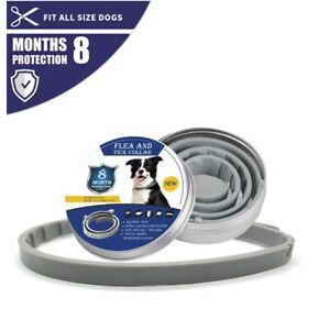 Dog & Cat Collar 8 Month Flea & Tick Prevention Collar Anti Flea Ticks Mosquito