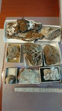 Mineralien, Sammlung, Harz, Steinbruch Winterberg, Baryt