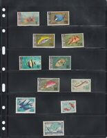 25 Lighthouse Vario 6S BLACK 6 Rows For Stamps Paper Money Professional Pack NEW