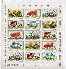 Rumania Flores hojita del año 1897 (CK-776)