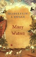 Many Waters (A Wrinkle in Time Quintet) by Madeleine LEngle