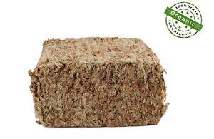 Sphagnum Moos 500 g Torfmoos, Dekomoos, PREMIUM Qualität, Chile