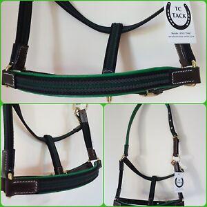 Green/Blk. Shetland. Light-weight Headcollar, Leather & webbing .
