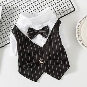 Dog Stripe Blazers Shirt Pet Suit Coat with Bow Poodle Cat Chihuahua Vest Black