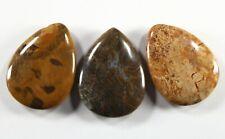 Three (3) Colorful Petrified Wood 30x40mm Teardrop Focal Beads (299)